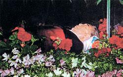 錦繻山(クムスサン)記念宮殿のガラス棺の中の金日成(キム・イルソン)主席の遺体。1994年にロシアの技術者らが永久保存処理した。