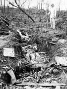 日本軍による韓国人女性虐殺と推定される写真。写真原本の説明がかなり損傷している。部分的に「虐殺された女性たち」「日本軍」などが英語で印刷されているのを確認できる。印刷された字とは別に、色鉛筆で「死傷者-韓国人(Casuaties-Korean)とメモした文字も残っている。
