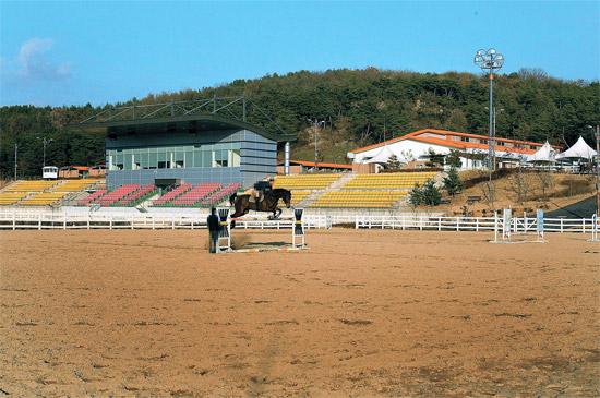 先月21日、慶尚北道尚州市沙伐面の尚州国際乗馬場補助競技場。教官が一人で障害飛越練習をしている。