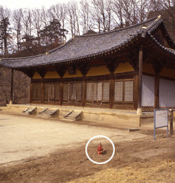 国宝18号・浮石寺無量寿殿の屋外消火栓(円の中)と火災感知器が作動しないことが分かった。(写真=中央フォト)