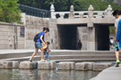 植物や魚に触れられ、川のせせらぎを気軽に楽しめる清渓川。天気の良い日こそ、ソウル都心の癒しスポットを散歩してみてはいかがでしょう。