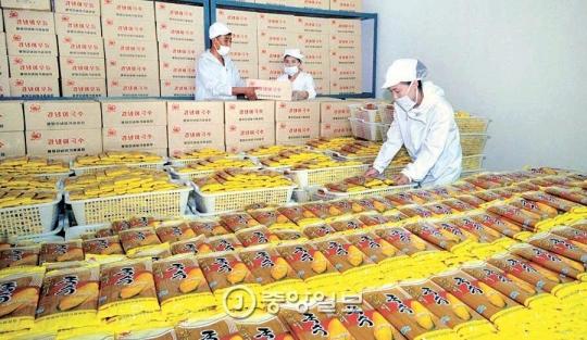 平壌トウモロコシ加工工場で生産した麺を整理する職員。北朝鮮の新興富裕層「トンジュ(金主)」は市場の価格動向を把握し、商品供給量を調節してお金を稼いでいる。(写真=中央フォト)