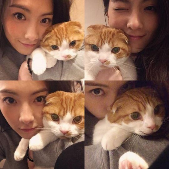 女優の知英と愛猫(写真=本人のインスタグラム)