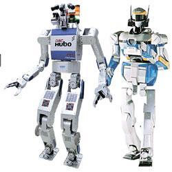 昨年の災害対応人型ロボット国際大会で優勝した韓国のHUBO(左)と10位の日本のHRP2+。
