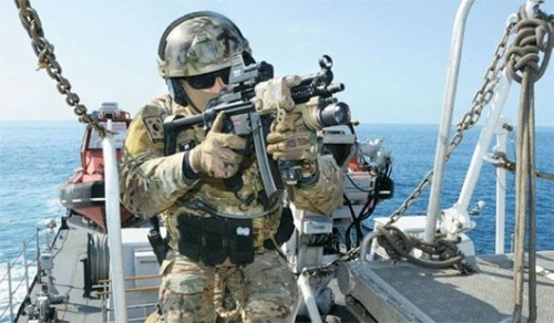 2日、遮断機動および乗船検査訓練で、海軍特殊戦戦団(UDT/SEAL)の隊員がWMDを積載していると疑われる仮想の北朝鮮船舶に入って検査をしている。(写真=韓国海軍)