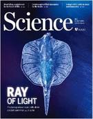 サイエンス誌の表紙を飾った「ロボットエイ」