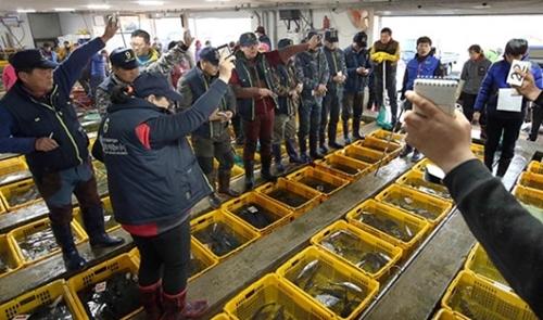 27日、全羅南道の康津郡水産協同組合で活気のあるせりが行われている。(写真=康津郡)