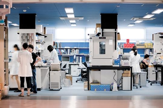 京都大iPS細胞研究所(CiRA)は研究チーム間の仕切りがないオープンラボ構造だ。ここで細胞を作って分化させる基礎研究から実際に手術をする臨床研究まで行われる。(写真=CiRA)