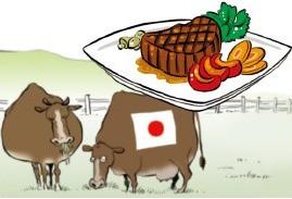 和牛ステーキ…日本の「おもてなし外交」の現場