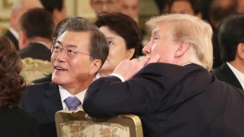 文在寅大統領とドナルド・トランプ米大統領夫婦が7日午後、青瓦台迎賓館で開かれた国賓晩さんでワシントン訪問時の写真を見ている。(写真=青瓦台写真記者団)