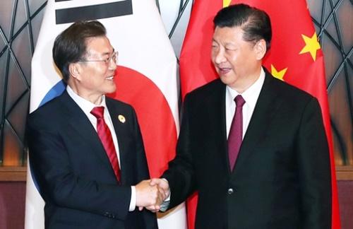 アジア太平洋経済協力(APEC)首脳会議に参加した文在寅大統領と習近平国家主席が先月11日午後(現地時間)、ベトナム・ダナンのクラウンプラザホテルで首脳会談を行う前に握手を交わしている。(写真=青瓦台写真記者団)