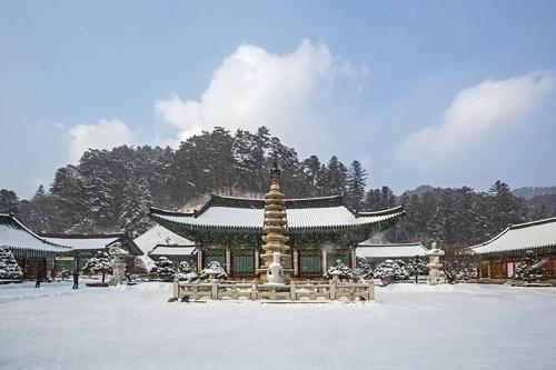 韓国平昌の観光地、月精寺(ウォルジョンサ)(写真=スカイスキャナー提供)