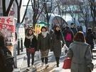 3月に入り、最高気温が10度前後まで上がり、春の気配が日増しに感じられるソウル。