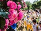 期間中はビューティー体験イベントやマジックショーなどの公演が開催。バラのトンネルや湖畔の散策路などフォトゾーンも豊富です。