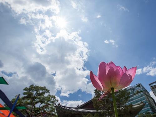 お経を読む声と鐘の音にのんびり耳を傾けていると、ソウルの都心にいることを忘れるほど。観光の合間に足を止め、まったり流れる空気に癒されるのも悪くありません。