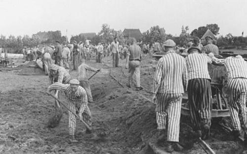 1941~42年、ドイツ軍に連れ去られた捕虜が強制労働を強いられている。(写真=米国ホロコースト記念博物館)