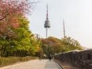 【NOW!ソウル】気軽に行ける♪南山公園で紅葉とソウルを一望