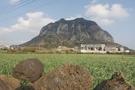 済州オルレ10コースを歩けば手が届きそうな山房山を通りすぎる。(写真=韓国観光公社)