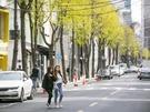 【NOW!ソウル】街歩きにぴったり♪春のカロスキルをチェック!