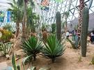 野外テーマ庭園と温室で構成される「テーマ園」は有料。それ以外の施設は24時間365日無料開放されています。