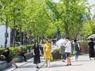 おしゃれなカフェが数多く集まる、弘大(ホンデ)の隣町・延南洞(ヨンナムドン)。ちょこっと街を歩くだけでも、思わず入りたくなるお店がたくさん!