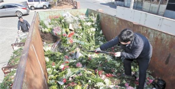 釜慶花卉共販場で職員が競売で入札が流れて枯れた花を廃棄処分している。ソン・ボングン記者