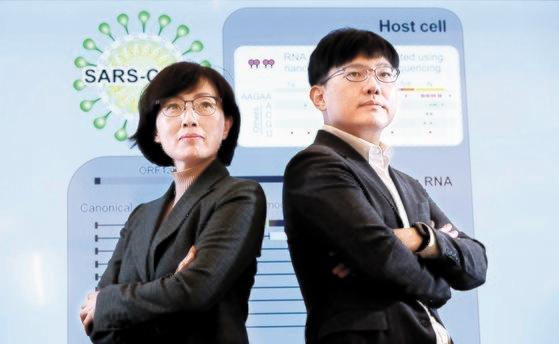 新型コロナウイルスの原因病原体であるSARSコロナウイルス-2のRNAトランスクリプトームを世界で初めて分析した共同研究チームで、韓国ソウル大学生命科学部のキム・ピッネリ教授(左)とチャン・ヘシク教授。今回の研究は計算生物学者であるチャン教授の寄与が決定的だった。チャン教授は第11回洪ジン基創造人賞科学部門受賞者だ。ビョン・ソング記者