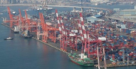 釜山南区の戡蛮埠頭と神仙台埠頭にコンテナが積まれている。ソン・ボングン記者