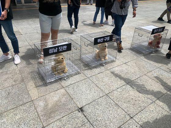 6日午前、大邱市庁前で動物保護団体の会員が大邱チルソン市場の犬肉食堂の廃業を求める記者会見を行った。 キム・ユンホ記者