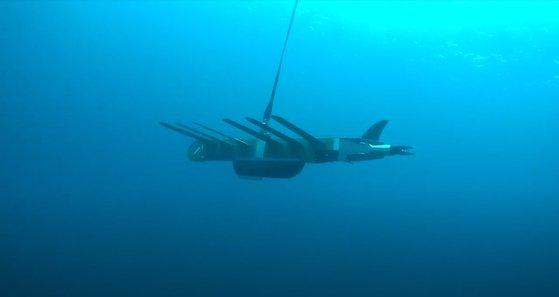 先月21日、済州和順沖に投入された低塩分水測定用ウェーブグライダー。[写真 済州道海洋水産研究院]