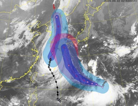 台風9号(左)と台風10号(右)が韓半島(朝鮮半島)に向かって北進中だ。2日午前2時50分現在の台風の衛星映像と予想経路。[グラフィック 韓国気象庁]