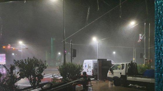 3日午前、嶺南(ヨンナム)地域を強打した台風9号の影響で、慶尚北道蔚珍(キョンサンブクド・ウルチン)の蓬坪(ボンピョン)海水浴場近隣の街路樹が倒れている。キム・ユンホ記者
