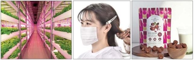 中小企業が発想の転換と革新製品を通じて海外新市場開拓に成功している。写真左から発電設備企業ポミットがクウェートに作った垂直スマートファーム、リングフリーが開発したひものないマスク、ミルアルKがシンガポールに輸出したプレミアムポップコーン。[写真 KOTRA]