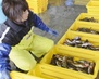 【取材日記】WTO水産物禁輸訴訟で韓国に敗れた日本の最後の負け惜しみ<img class='tag02' src='https://images.joins.com/ui_joins/japan11/common/i_new.gif' alt='new' border='0' />